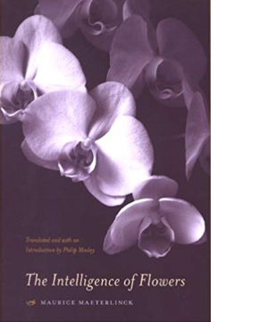 The Intelligence of the Flowers by Maurice Maeterlinck